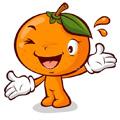 Koks tu vaisius?