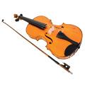 Koks tu muzikinis instrumentas?